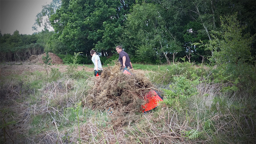 Helping Volunteers Conserve a Site of Scientific Importance